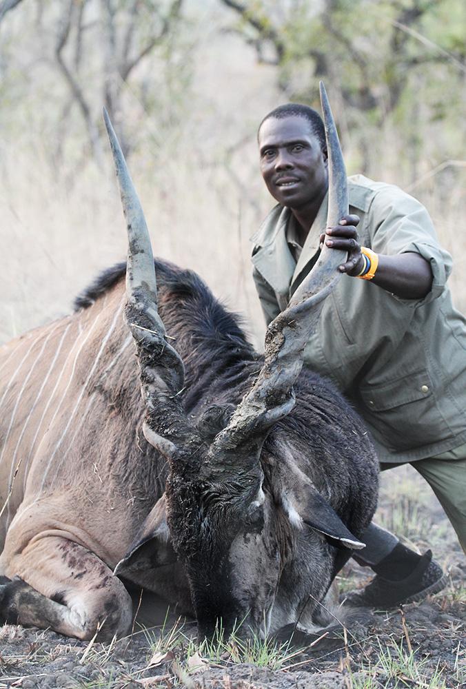 Hunting Derby Eland Cameroon